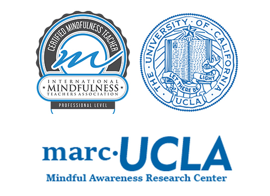 Free Talk On Mindfulness Practice For >> About Mindful Aviator